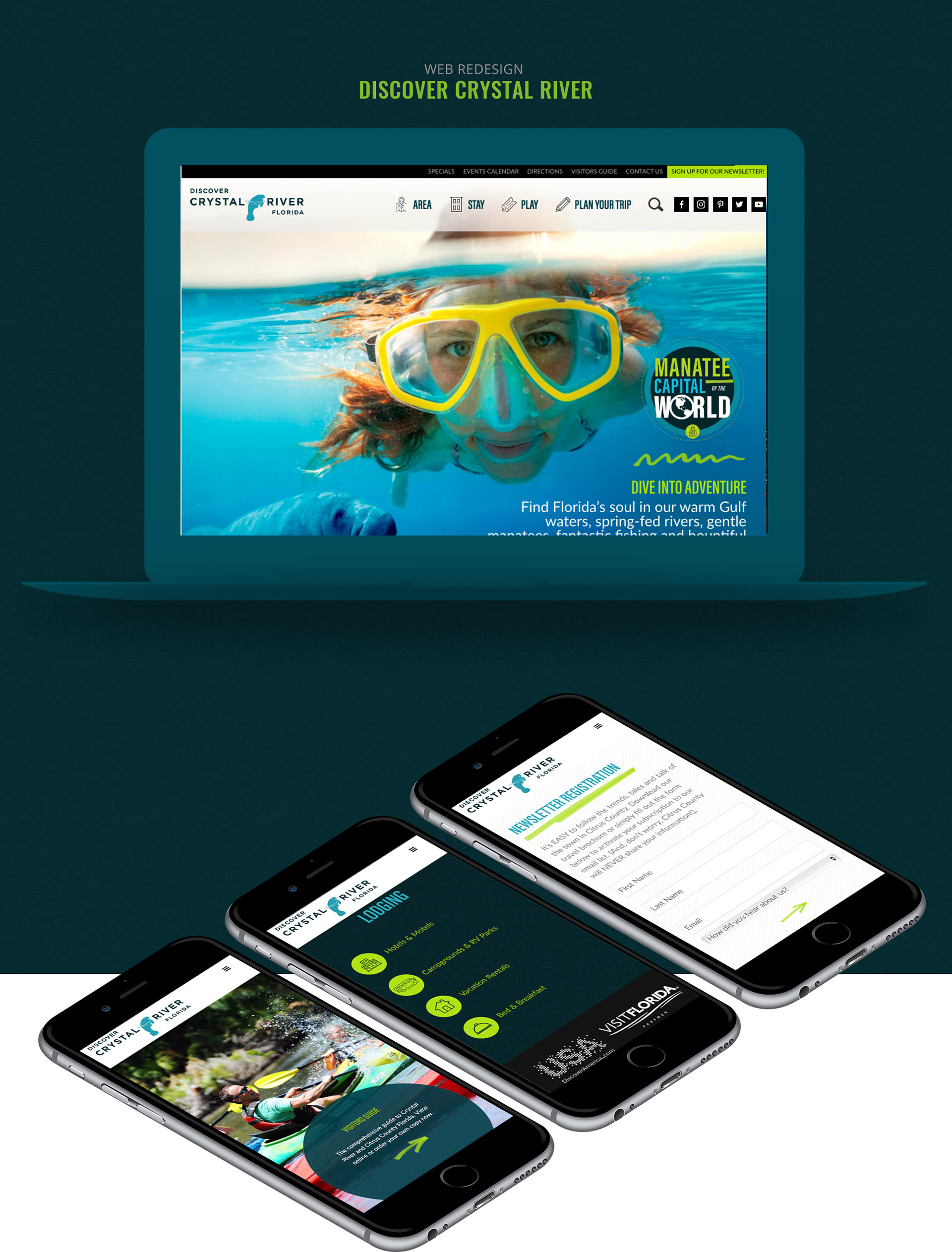 crystal river, citrus county, website design, development