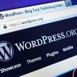 WordPress Security and Maintenance