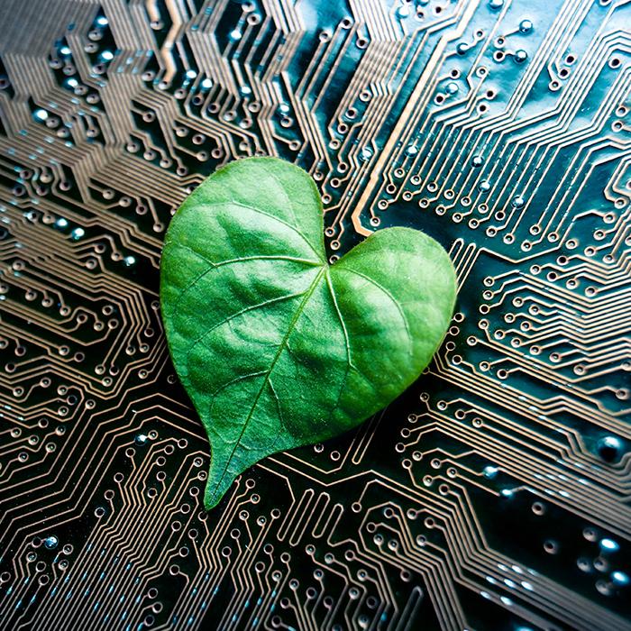 GreenTechConsumerElec